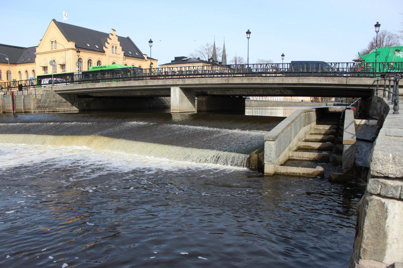 Fiskvägen vid Islandsfallet i Fyrisån, Uppsala är ett exempel på en teknisk fiskväg där asp tar sig vidare uppströms via en slitsränna.