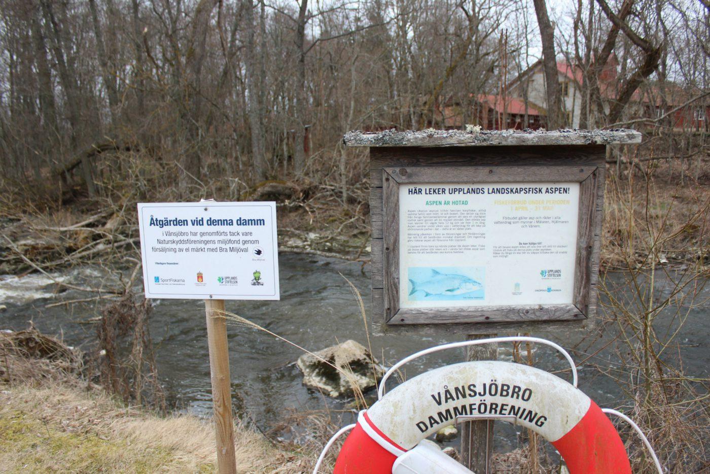 Information- och kunskapsspridning är mycket viktigt. Vare sig det rör sig informativa skyltar som vid Vånsjöbro eller organiserade guidningar så är det en viktig pusselbit för ett hållbart fiske.