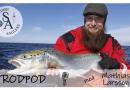 Avsnitt 4 av Swedish Anglers RodPod
