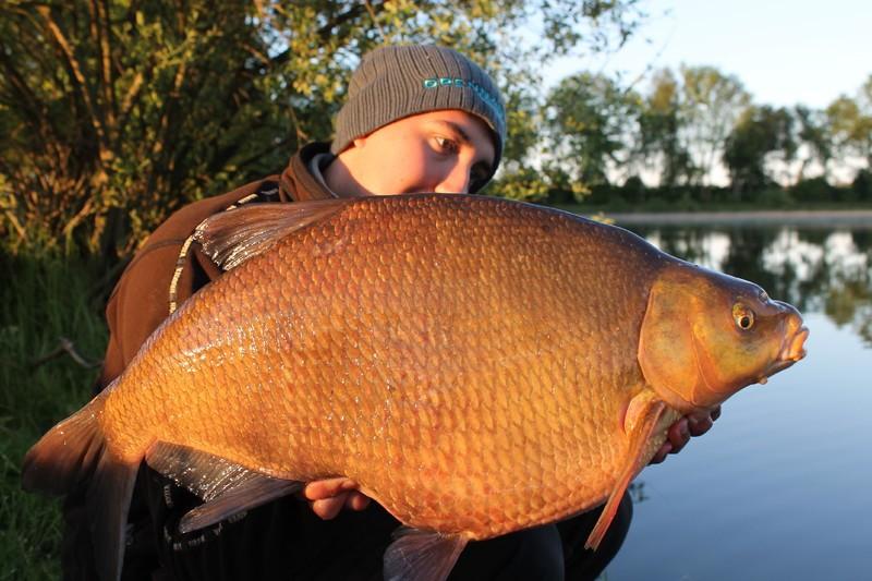 Metet i Sverige: Hur stor är en stor fisk?