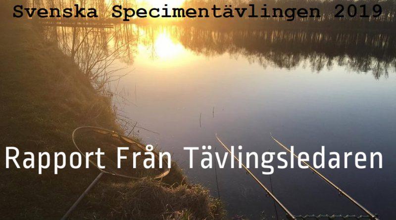 Tredje Rapporten – Svenskan