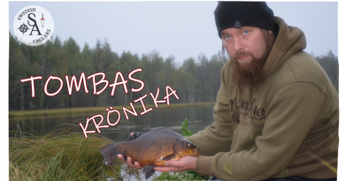 Tombas Krönika februari 2019
