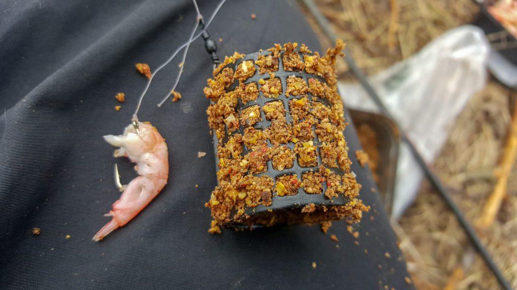 Mäsk i feedeern och räka på kroken