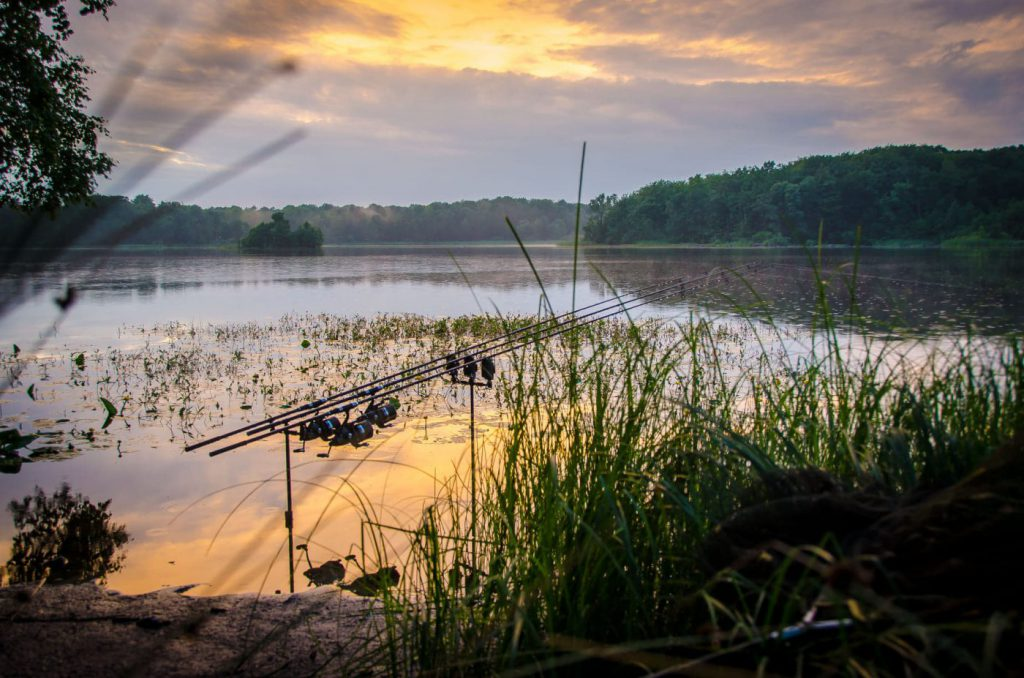 Daniel Demeter med en riktigt fin bild vid en sjö