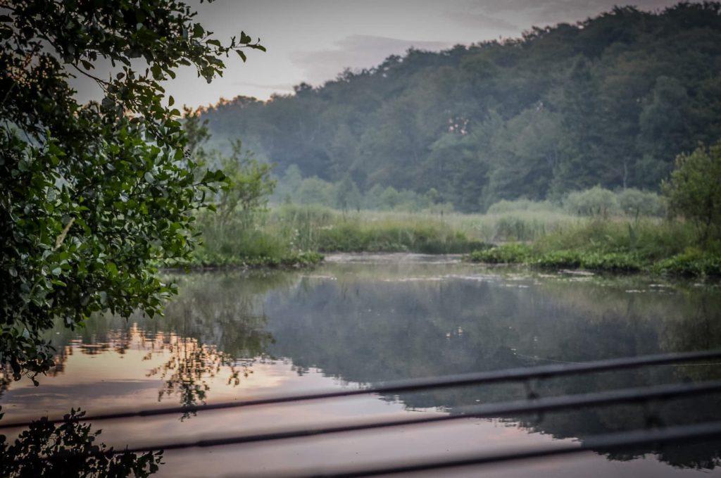 Daniel Demeter med en riktigt fin bild vid en mindre sjö