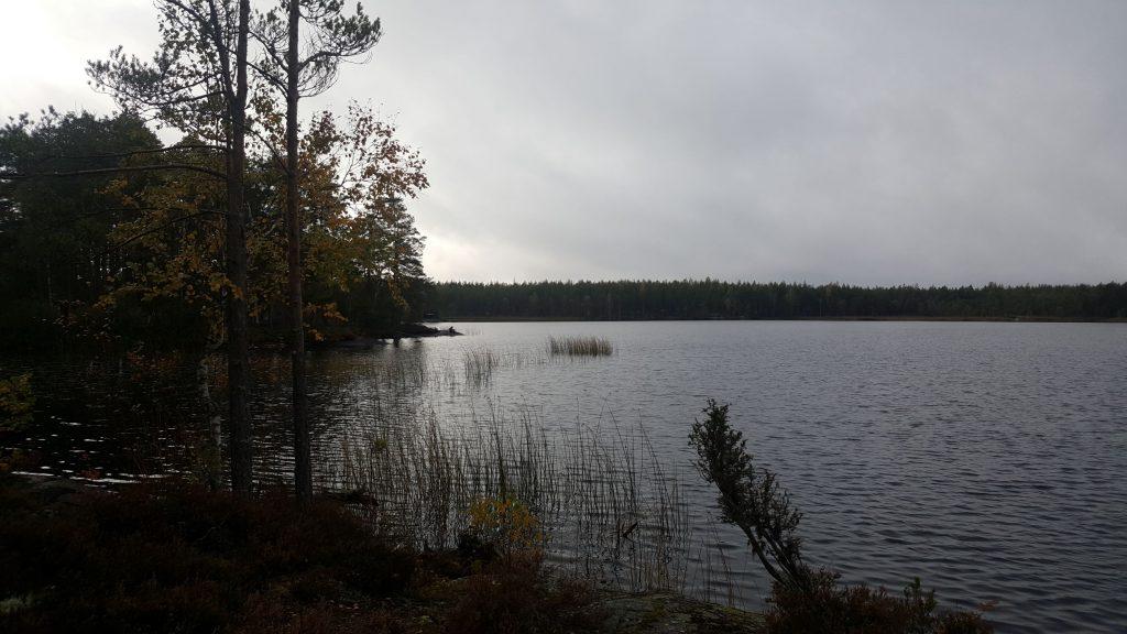 Tombas krönika September 2019 - Utsikt över sjön