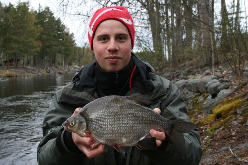 Henrik Svenningsson med en fin björkna