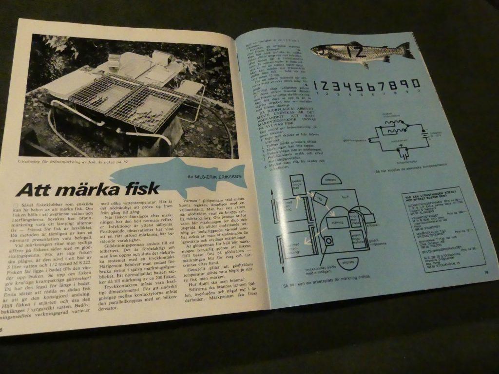 Svenskt fiske artikel - Att märka fisk