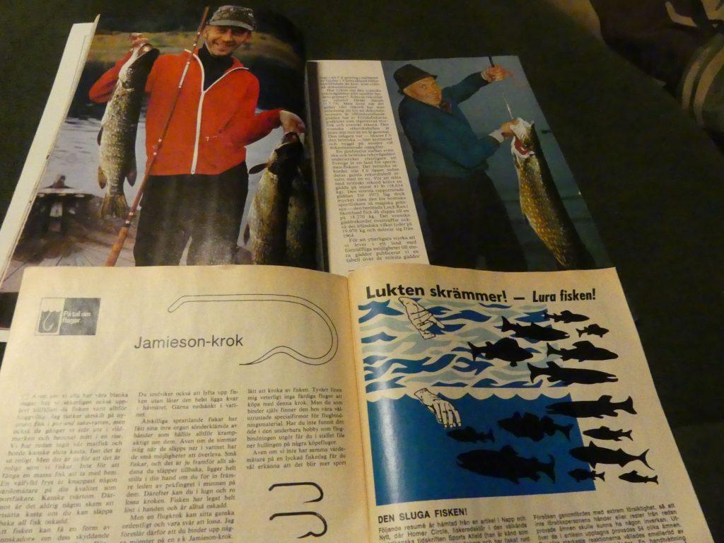 Färgbilder i tidningen