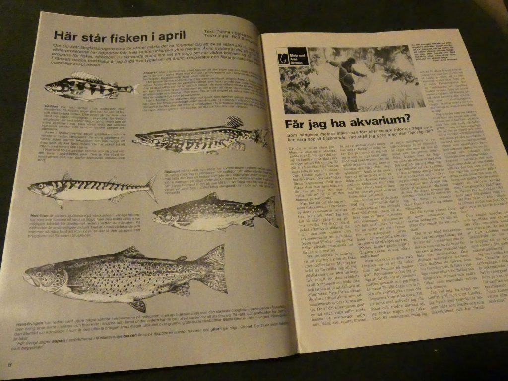 artikel i Svenskt Fiske