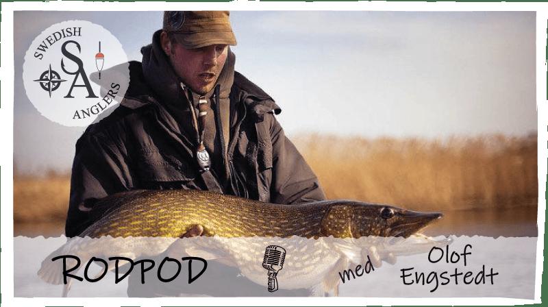 Avsnitt 16 av Swedish Anglers RodPod